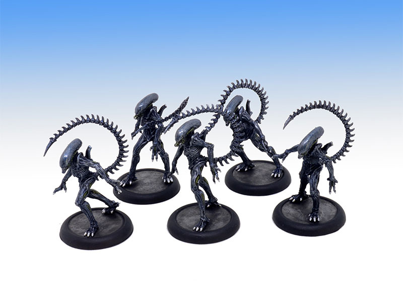 Alien Infant Warriors - Tabletop Level Painting Commission