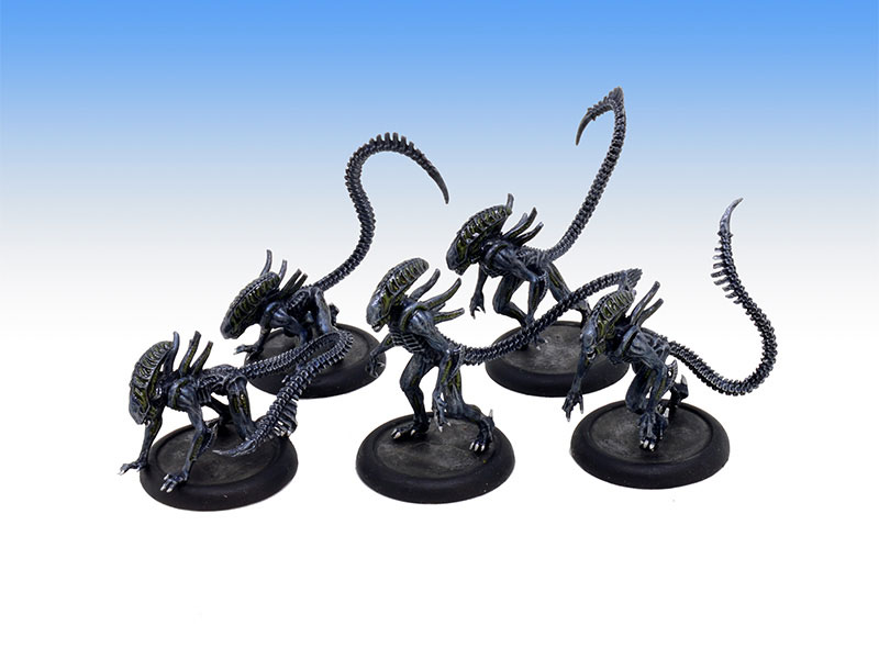 Alien Warriors - Tabletop Level Painting Commission