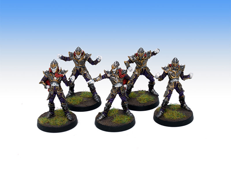 Greebo Dark Elves Linemen - Tabletop Level Painting Commission