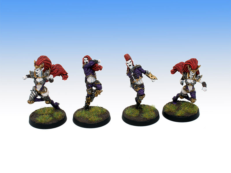 Greebo Dark Elves Witch Elves and Blood Dancers - Tabletop Level Painting Commission