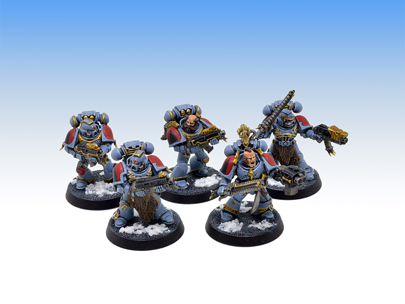 Space Wolves Grey Hunters - Tabletop Level Painting Commission